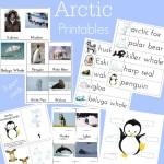 Montessori Arctic Activities ~Polar Regions (Free Printables)