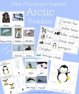 Montessori Arctic Activities ~Polar Regions (Free Printables)