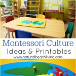 Montessori Culture Ideas & Printables