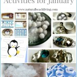Preschool Activities for January