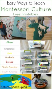 Easy Ways to Teach Montessori Culture (Free Printables)