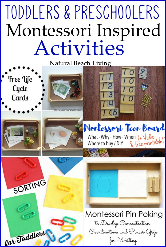 Montessori Inspired Learning Activities for Toddlers and Preschoolers, Montessori Math, Color Sorting, Life Cycles, Loads of teaching information and inspiration.