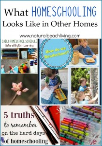 What Homeschooling Looks Like (Linky 56)