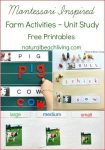 Montessori Farm Activities ~ Farm Theme Unit Study {Free Printables}