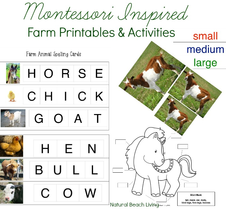 Montessori Farm Activities, Farm Theme Unit Study, Farm Animal Spelling words for Early Elementary, Movable Alphabet, Hands on Learning, Free Printables