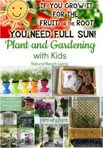 Plant and Gardening with Kids