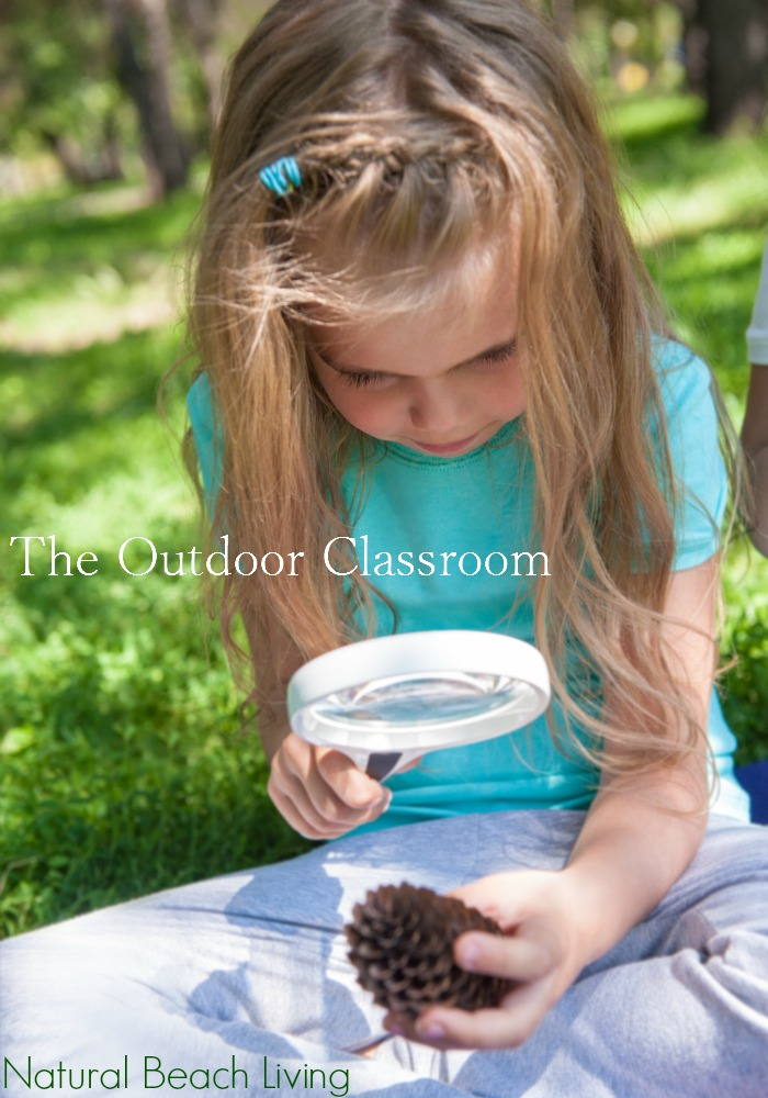 Outdoor Classroom Ideas and Natural Learning, Outdoor Play Spaces, Nature and Natural Science for kids