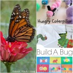 Caterpillar & Butterfly Ideas (Linky 60)