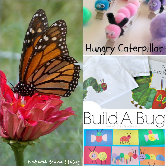 Wonderful Caterpillar and Butterfly Ideas, Crafts, DIY, Fine Motor, Natural Learning, The Butterfly Life Cycle and Spring Activities for Kids