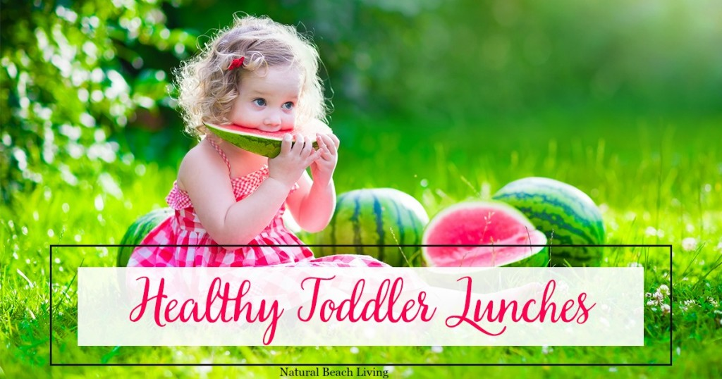 Healthy Toddler Lunches FB