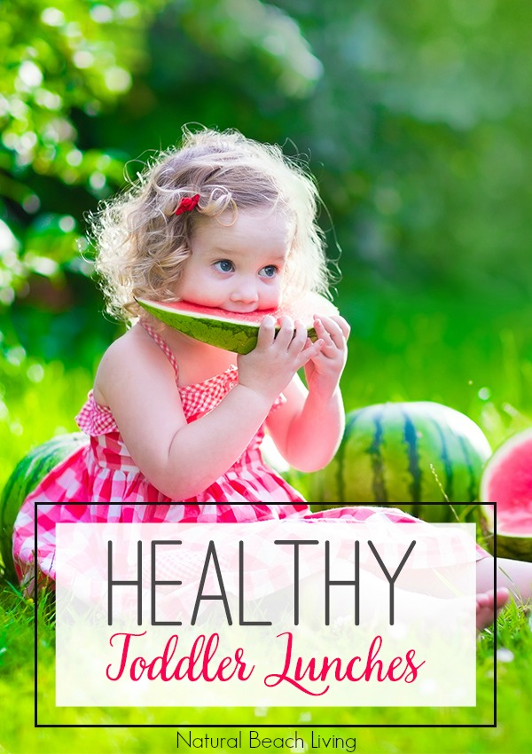 20+ Delicious Healthy Toddler Lunch Ideas