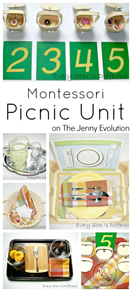 The Perfect Montessori May Activities, Pond theme, pond activities, strawberry life cycle and parts, Free printables, Insects, Sensory and more.