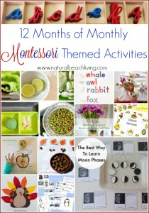 12 Months Of Monthly Montessori Themed Activities