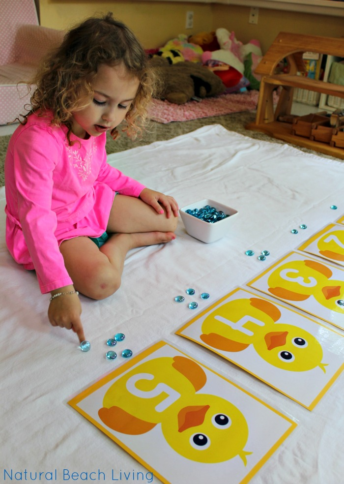 Pond Theme Activities – STEM – Free Printables