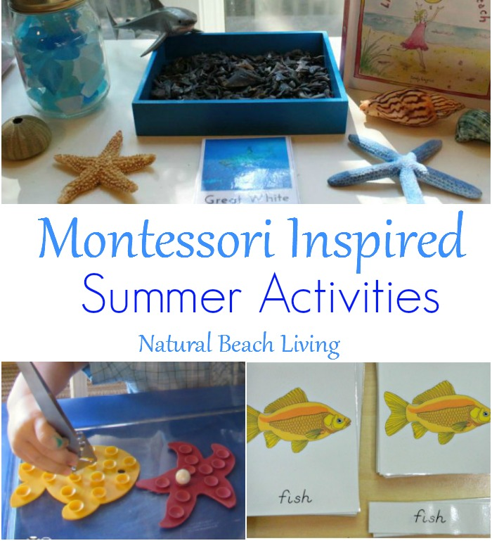 montessori summer activities for june fb