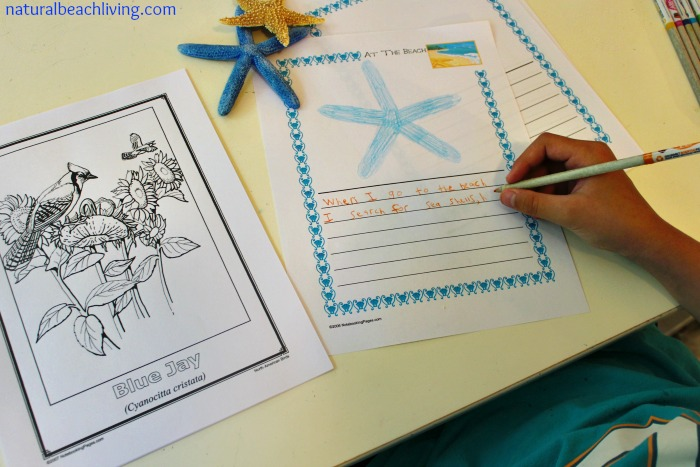 How to Incorporate Notebooking into your Homeschool Day, Lapbook, journaling, and notebooking with kids, Great for homeschooling, Charlotte Mason