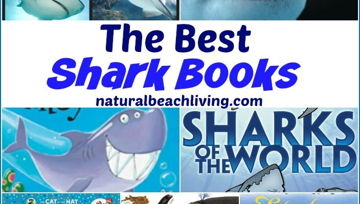 The Best Shark Books for Kids
