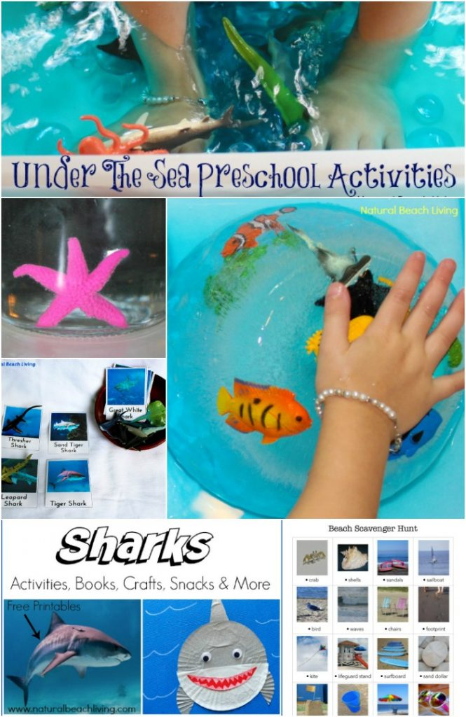 20+ Under the Sea Preschool Theme Activities and Printables