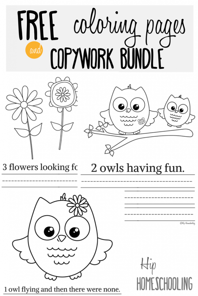 owl printables homeschool