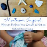 The Best Ways for Exploring Senses in Nature
