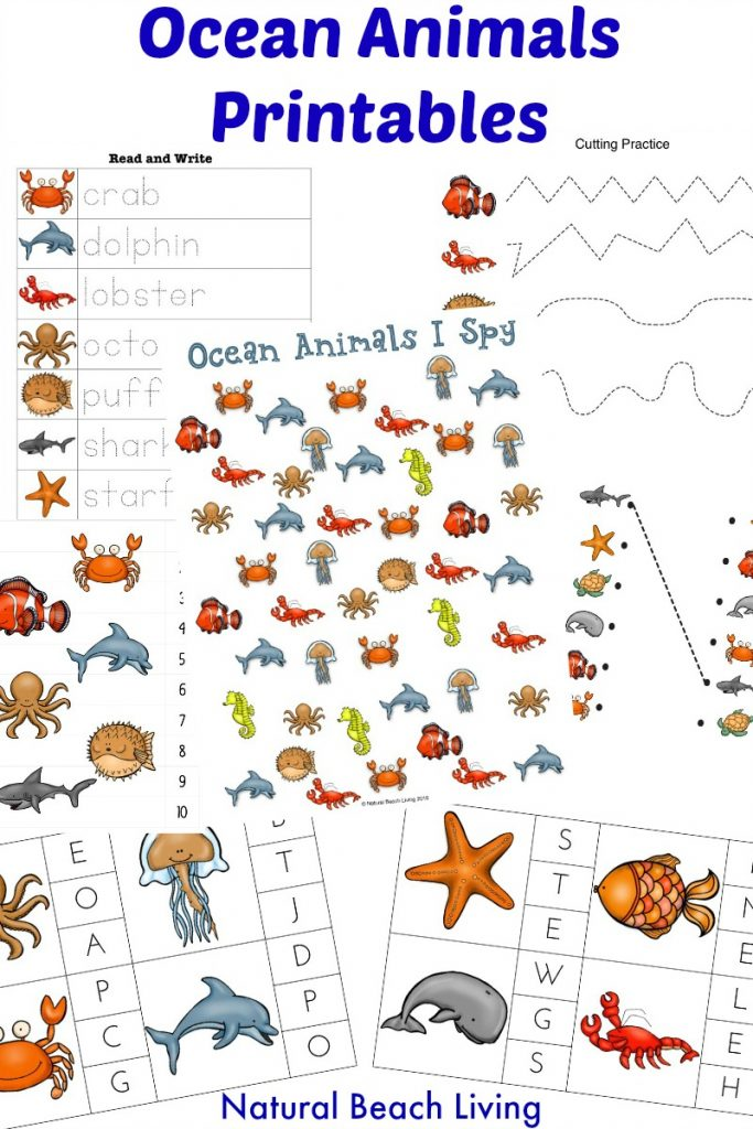 The Best Ocean Animals Preschool Activities, Free Printables, Perfect Preschool Ideas for Ocean or Under the Sea theme, I SPY Counting & Alphabet Clip Cards, Puzzles and More