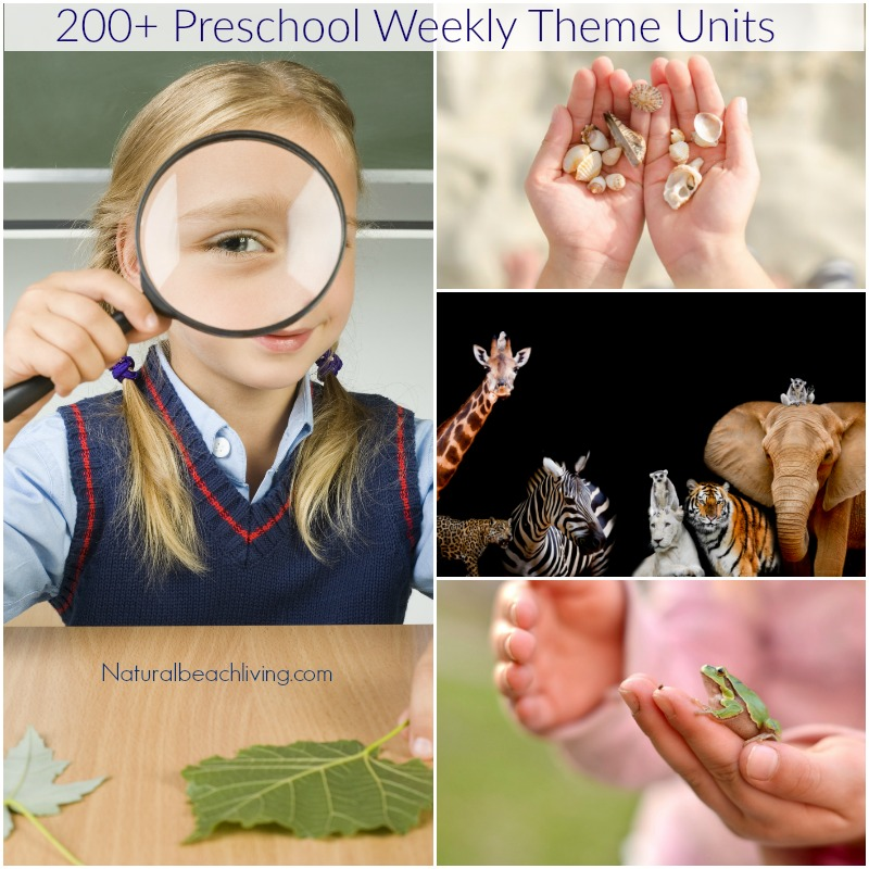 200+ of the Best Preschool Themes and Lesson Plans, Tons of Pre-K activities and printables, Perfect for weekly or monthly themed learning or unit studies.