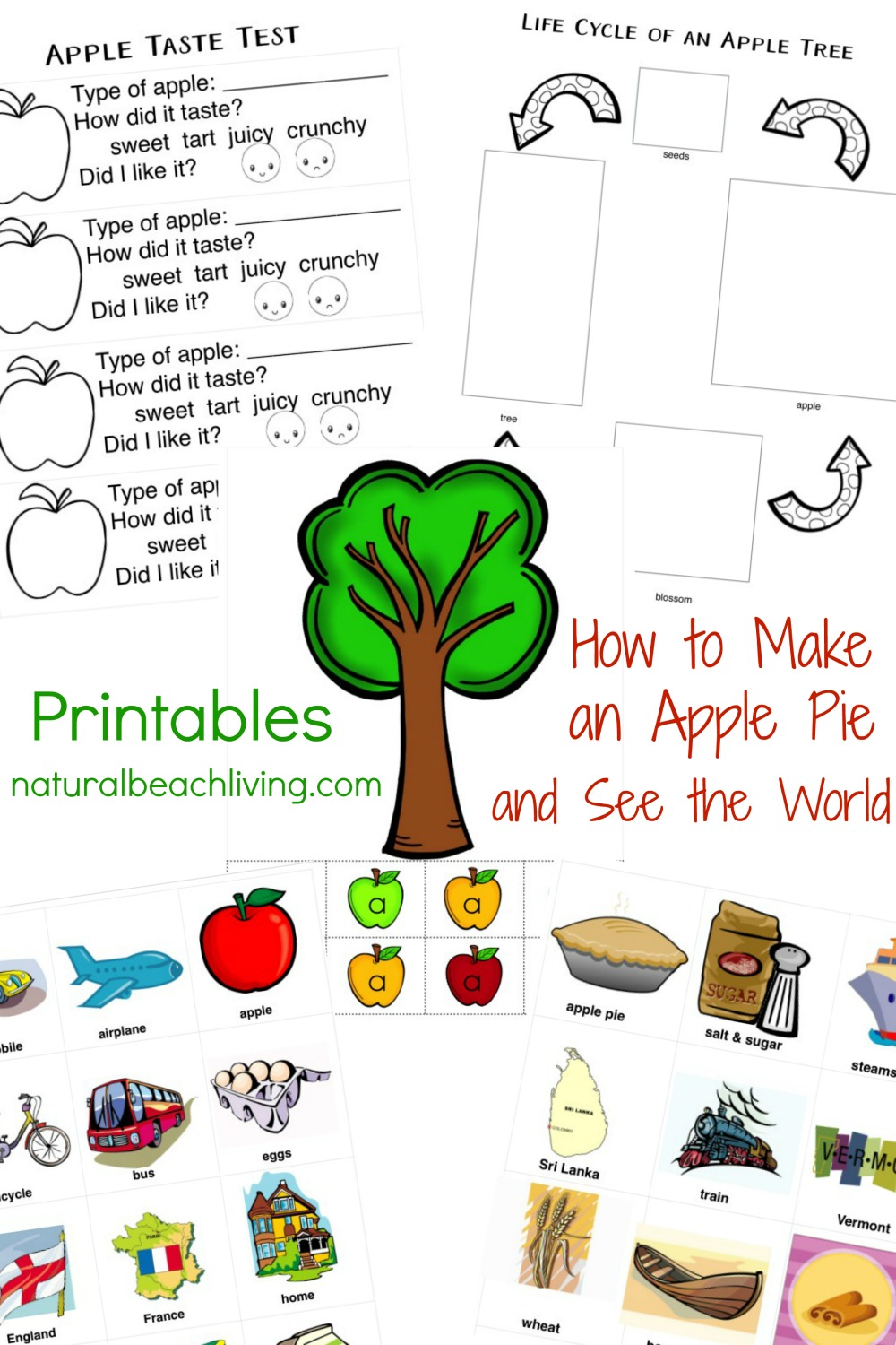 30+ Free Apple Printables for Preschool and Kindergarten - Natural ...