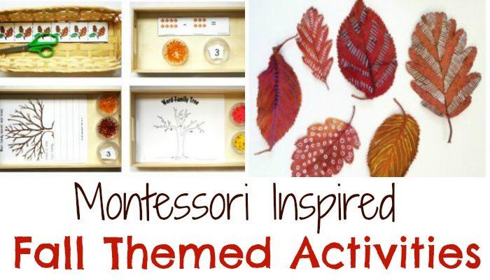 Fabulous Themed Fall Montessori Activities