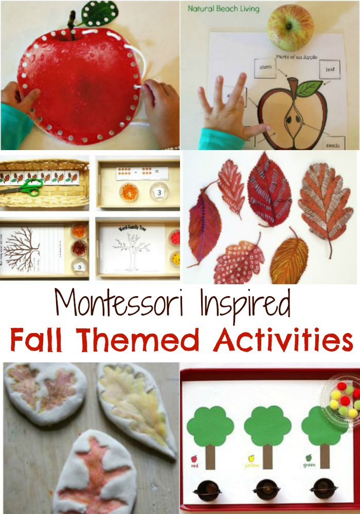 The Best Themed Fall Montessori Activities, Apple Activities, Nature Ideas, Leaf activities, Free Printables, Fall Activities for kids, Montessori Themes