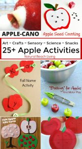 25+ Awesome Apple Activities for Kids