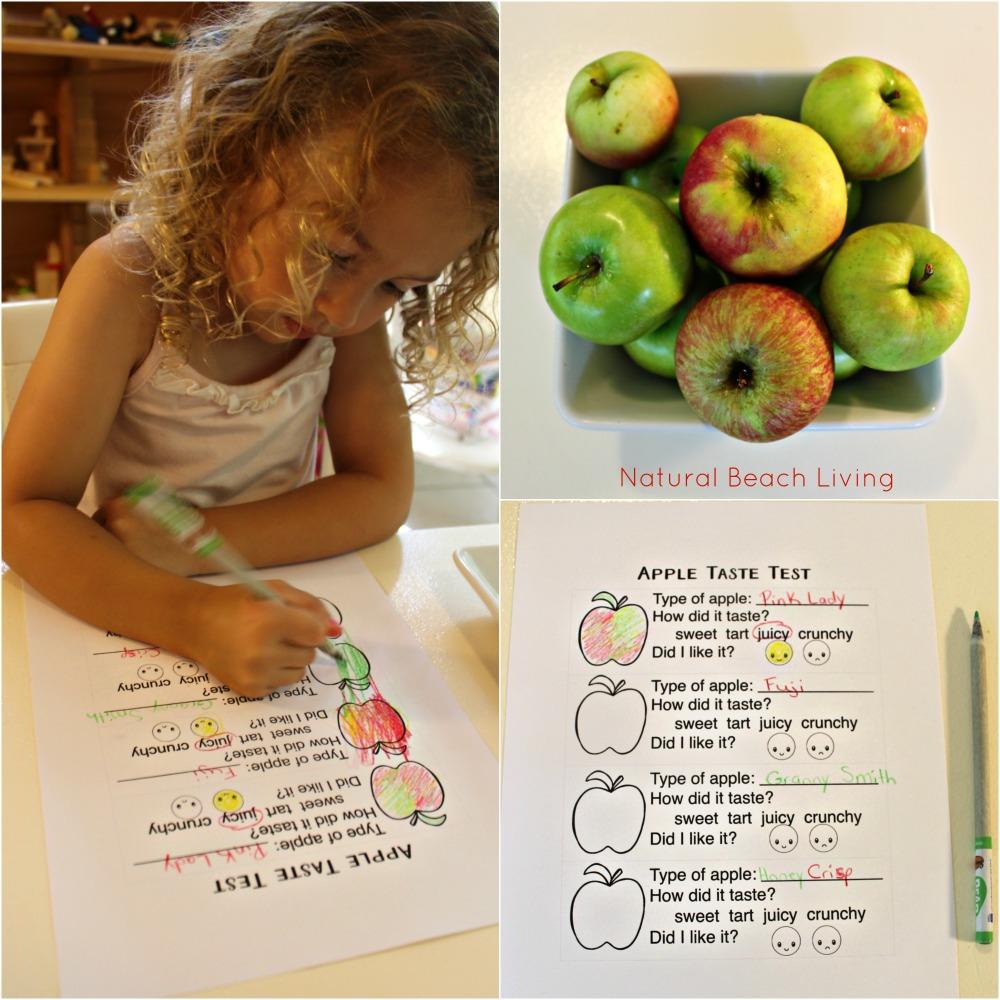 apple taste test preschool week, The Best Apple Activities for Toddlers, Preschoolers and Kindergartners, FIAR, BFIAR, Free Printables, How to Make an Apple Pie, Homemade, Hands on Learning