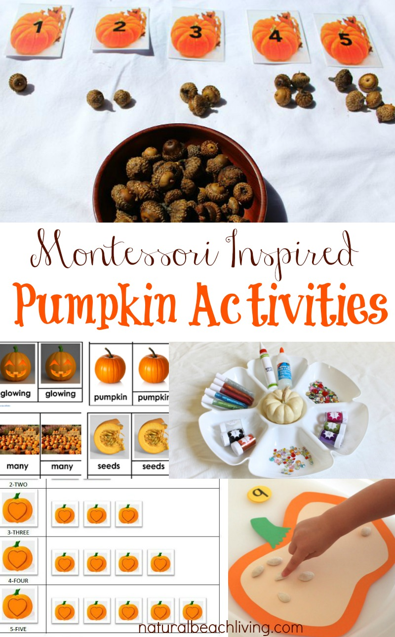 montessori-pumpkin-activities