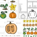 The Perfect Pumpkin Activities for Kids