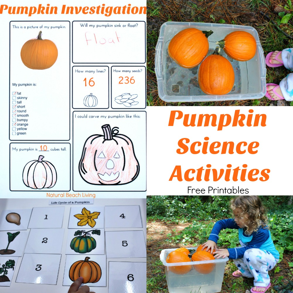 How to Make Saline Solution Slime, Pumpkin Jiggly Slime, Saline Slime Recipe, Pumpkin Theme, Saline Solution Slime Recipe, Pumpkin Guts Fluffy Slime