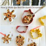How to Make The Best Birdseed Ornaments