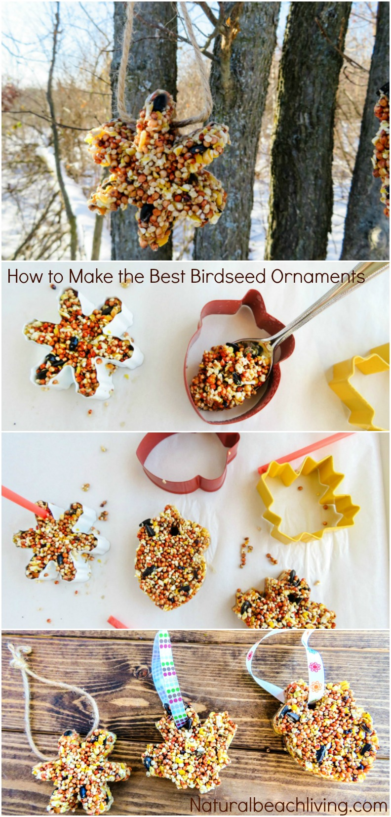 How to Make Apple Birdseed Homemade Bird Feeders, Apple Bird Feeders, Easy Homemade Bird Feeders, Great Fall Craft for Kids, Homemade Bird Treats