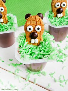 The Cutest Groundhog Day Snack Idea for Kids