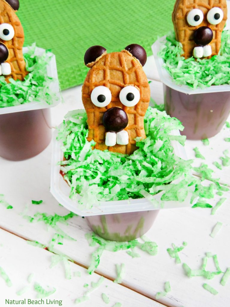 The Cutest Groundhog Day Snack Idea for Kids, Your kids will love these pudding cups filled with a yummy groundhog cookie. Great Snack Idea