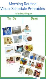 The Perfect Morning Routine Visual Schedule Printables