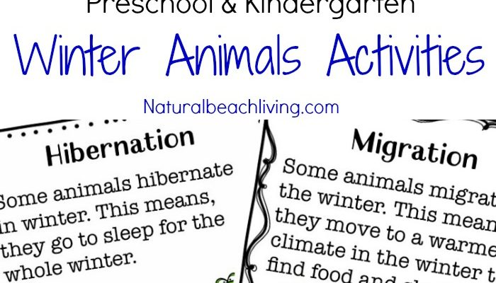 The Ultimate Winter Animals for Preschool Activities