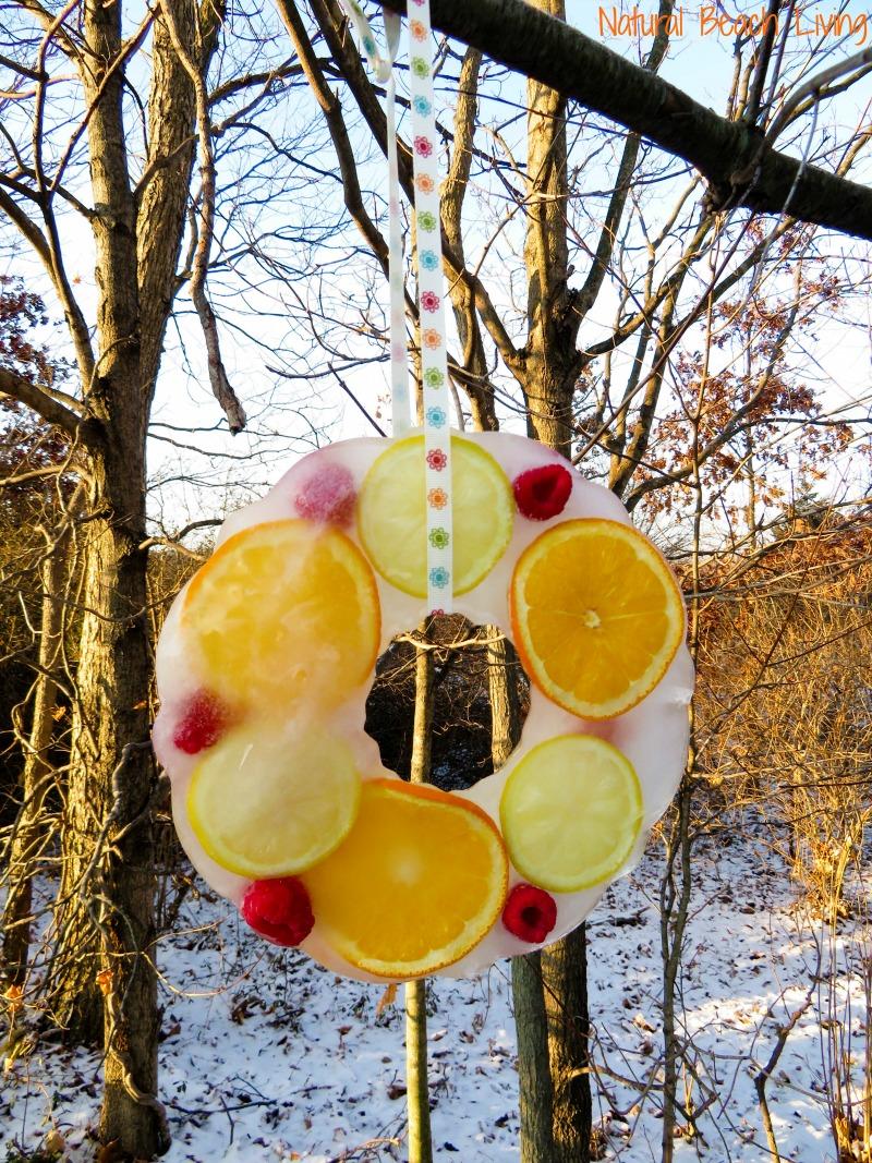 How to Make Beautiful Icy Homemade Bird Treats