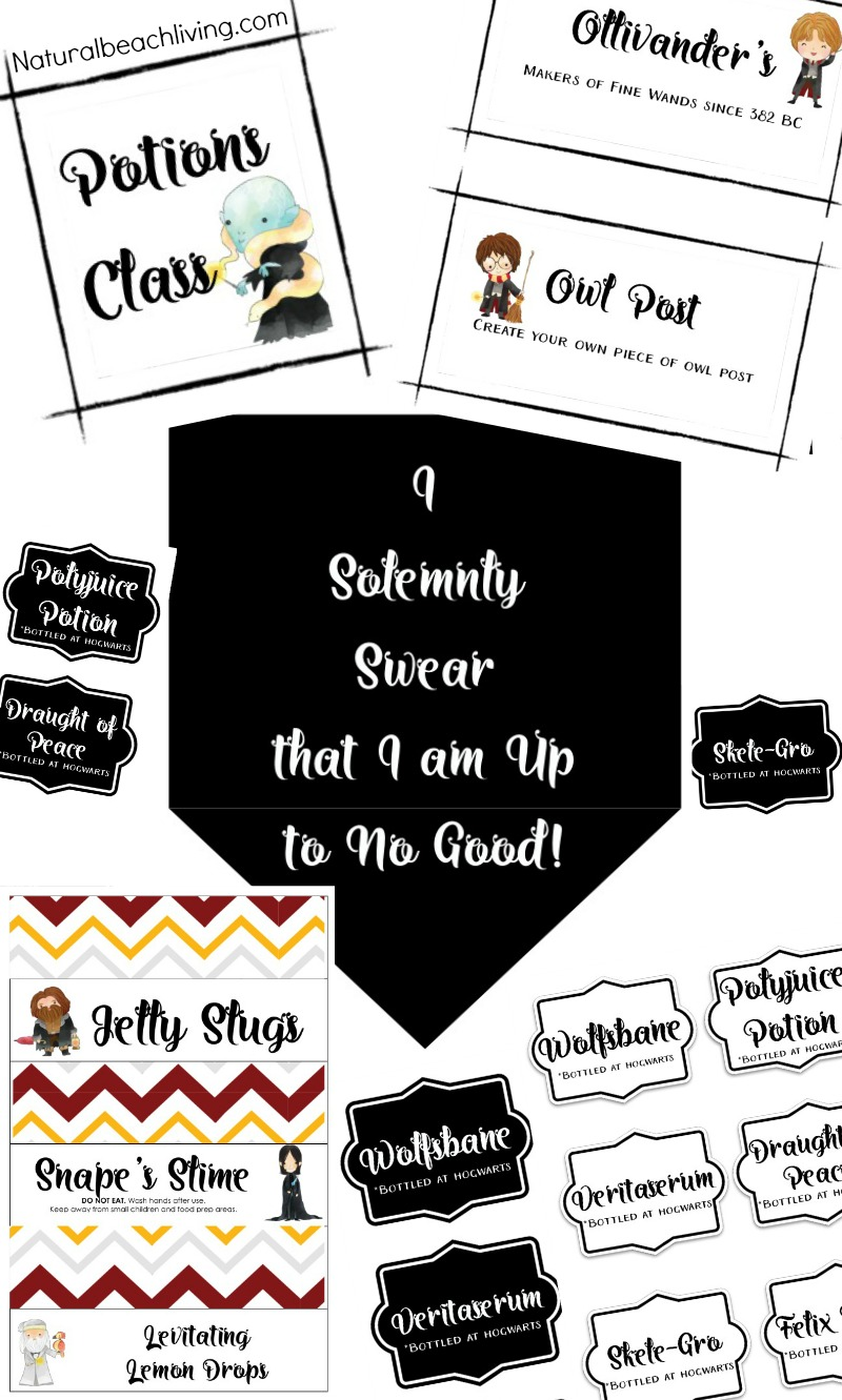 The Best Harry Potter Party ideas and Printables