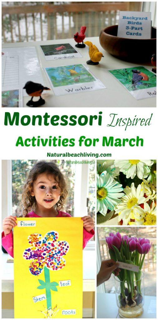10+ March Montessori Activities for Preschoolers and Kindergarten, Flower activities, Montessori Monthly themes, Bird Activities, Hands on activities