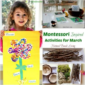 10+ March Montessori Activities for Preschoolers