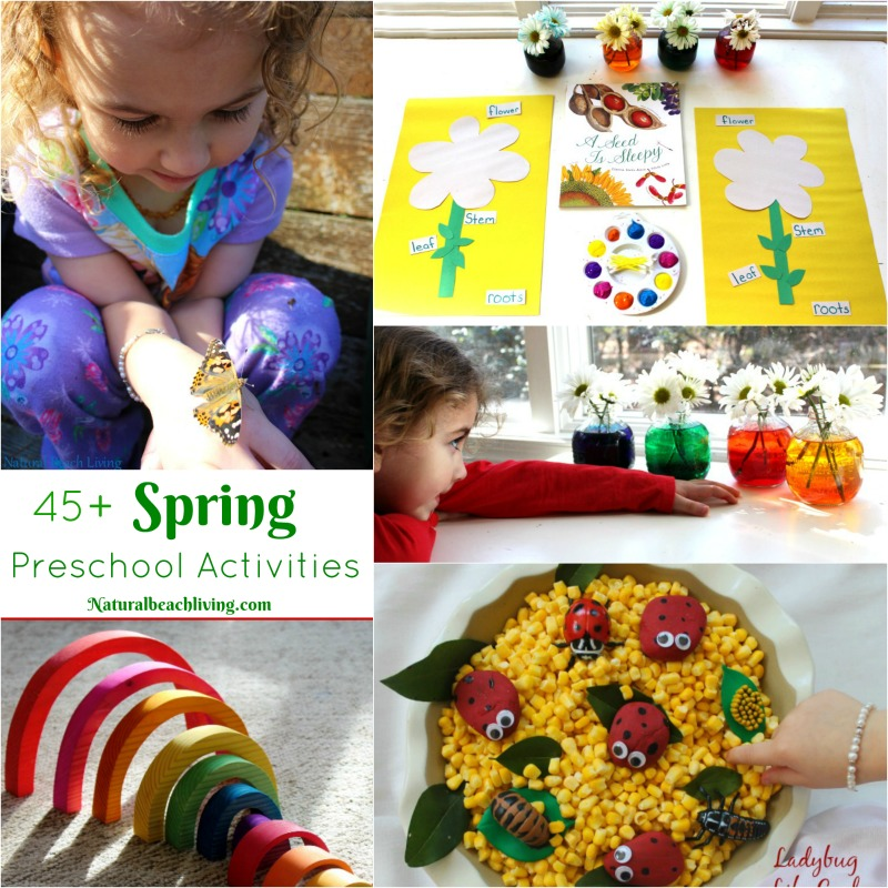 45+ Spring Preschool Activities That Make Everyone Happy, Life Cycle preschool activities, flower activities, sensory bins, preschool crafts, nature & more