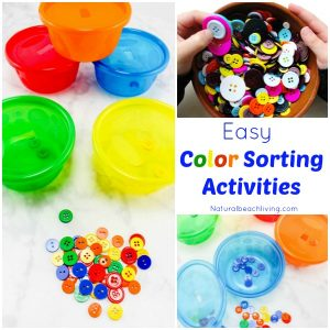 The Perfect Color Sorting Activities for Preschoolers & Toddlers