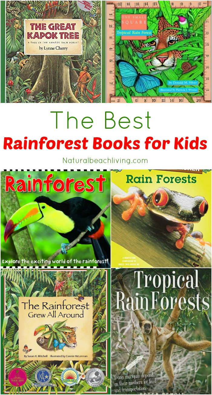 The Best Rainforest Children Books, Perfect for a rainforest theme unit study, preschool activities & animal habitats, Rainforest Ecology, climate, animals