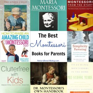 The Best Montessori Books for Parents
