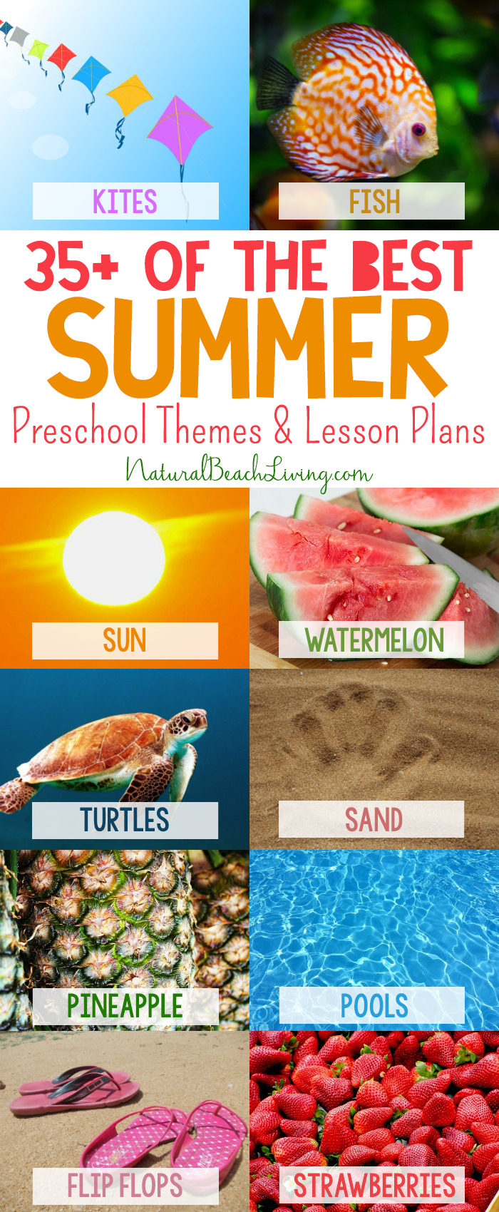 35+ Best Summer Preschool Themes and Activities