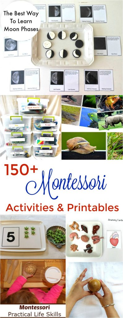 150+ Amazing Montessori Activities and Printables